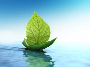 iStock yachts go green