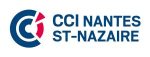 large_ccinstn-coul-2lv-01