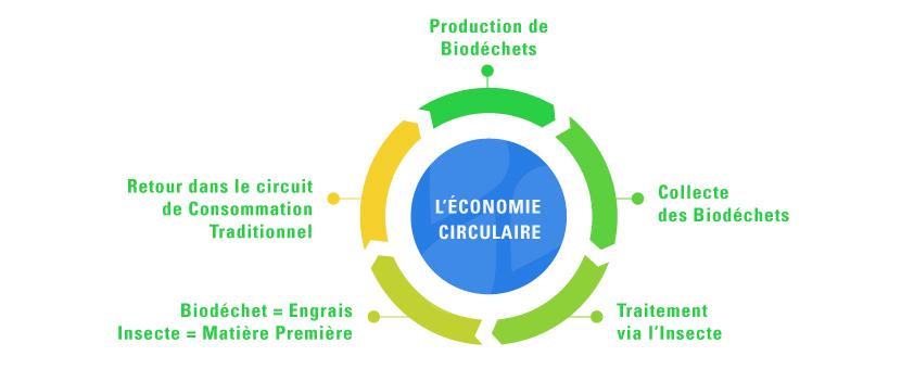 infographie-Gestion-des-biodechets (1)