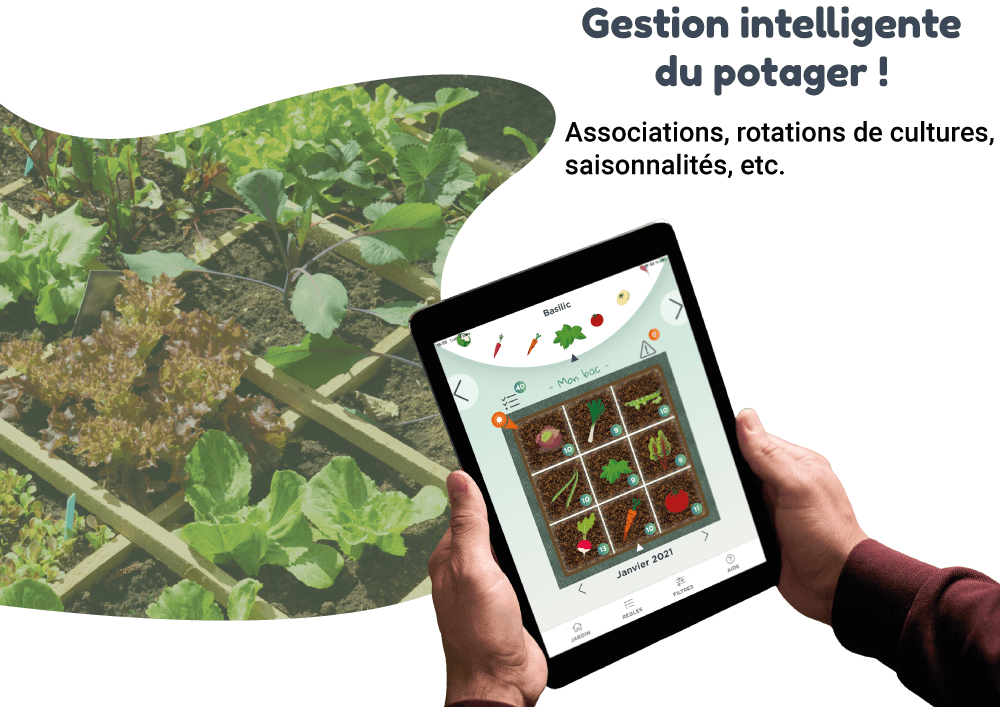 ortusia-gestion-potager